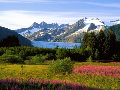 Приятный отдых на Кавказе