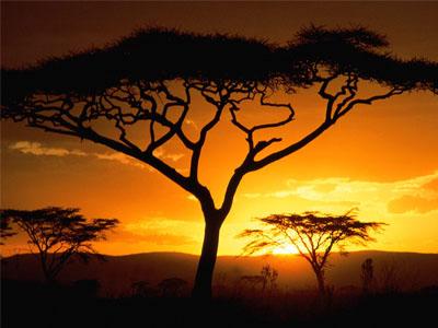 Страна мечты Танзания