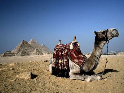 О Египте и отдыхе в целом