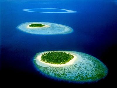 Незабываемый отдых на Багамских островах!
