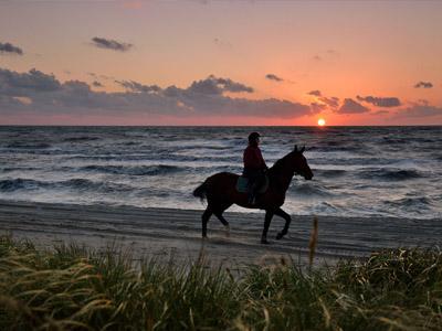 Путешествие по берегам янтарной Балтики