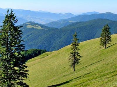 Отдыхаем в горах