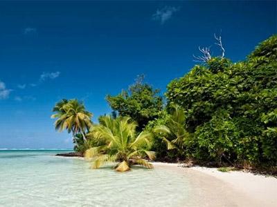 Чудесный Мадагаскар