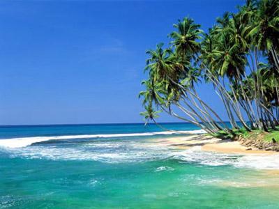 Восхитительная Шри-Ланка