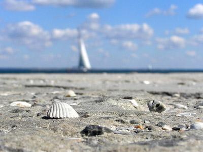 Черноморское побережье в России