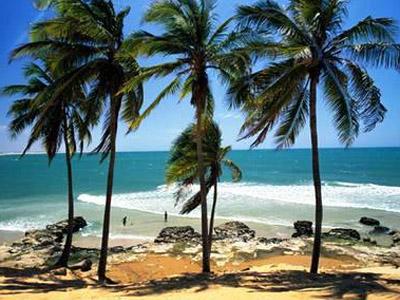 Красавица Бразилия
